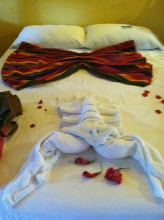 Island Pearl: How we were greeted in the one room suite.  (The rose petals were from my husband though :)