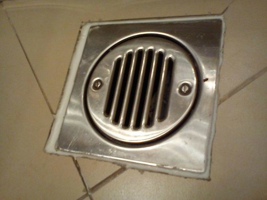 Cromwell International Hotel: bug at right side of drain