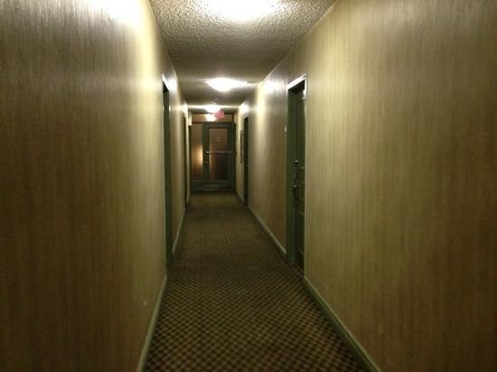كومفورت هوتل داون تاون تورونتو: hallway