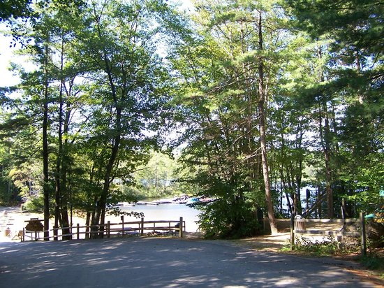 Clearwater Campground: Lots of woods.  Real camping not a parking lot!