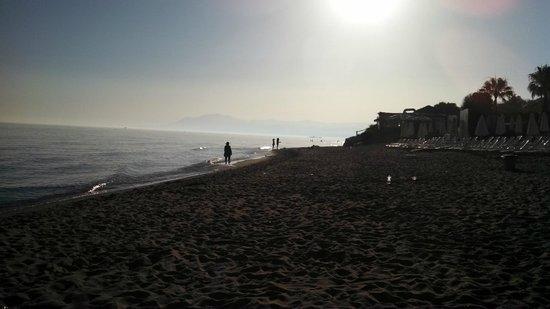 Don Carlos Leisure Resort & Spa: The beautiful sea