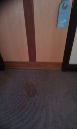 Arora Hotel Manchester: Carpet stain (not come out clearly on photo)