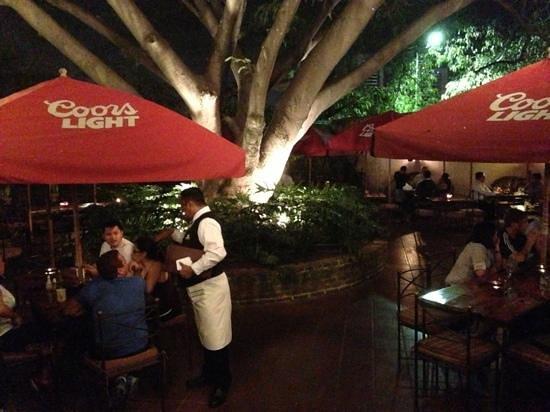 Hacienda Real : The Beautiful Tree in the Courtyard