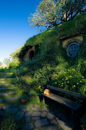 B&B @ The Redwoods: Visiting Hobbiton for a day trip