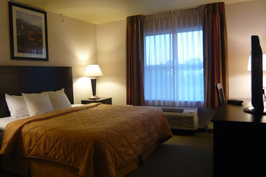 Comfort Inn & Suites Creswell: King bedroom