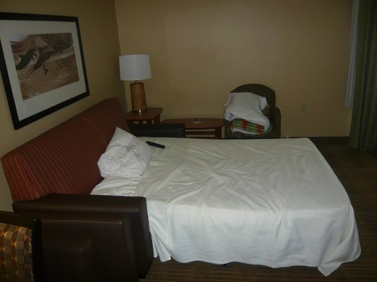 Extended Stay America - Orlando Theme Parks - Vineland Rd.: un buen sofá cama adicional