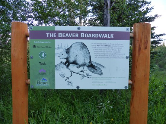 The Beaver Boardwalk : boardwalk