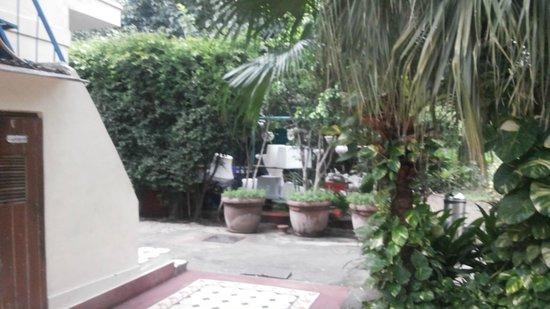 Lutyens Bungalow: Near the pool
