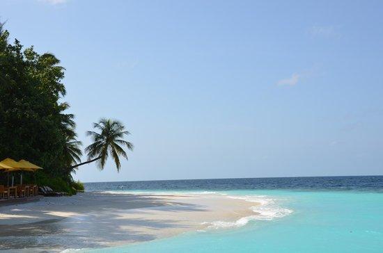 Angsana Ihuru: View from jetty