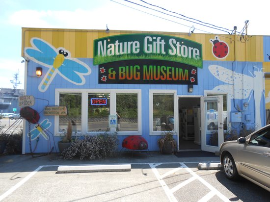 Bremerton Bug Museum: Front of museum