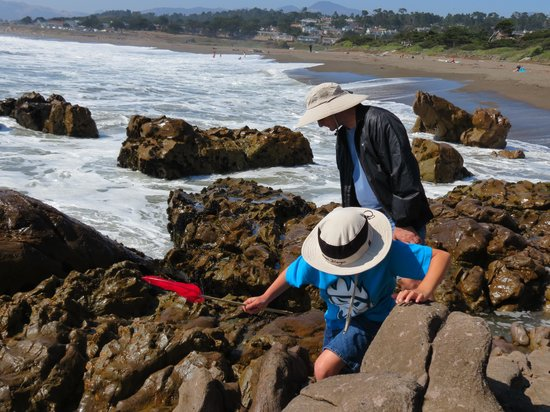 FogCatcher Inn : Tide pools (with tide coming in)