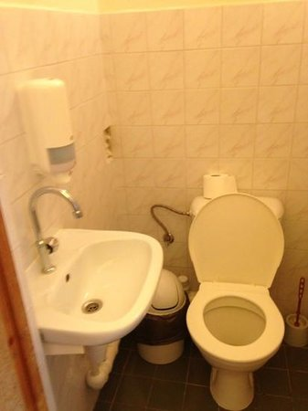 Hotel Dainava: санузел