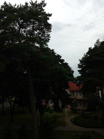 Hotel Dainava: вид с балкона