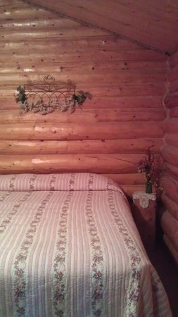 Carlo Creek Lodge: Cabin A queen bed