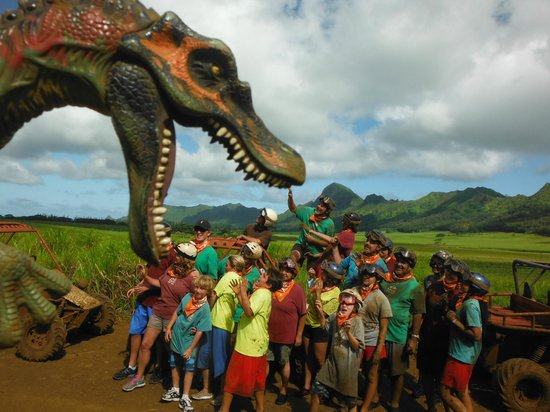 Hawaii Atv Tours Tripadvisor