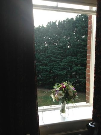 Brandon House: View from bedroom