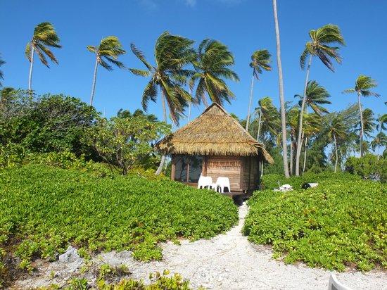 Fakarava, French Polynesia: bungalow fronte oceano