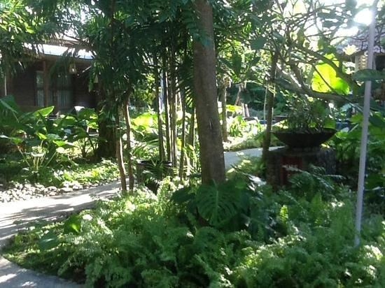 Jardin au centre de l hotel for Centre de jardin