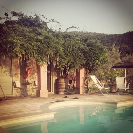 Villa Morelli: La piscina