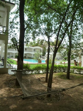 Tiger Den Resort: Hammock ready for those willing to relax