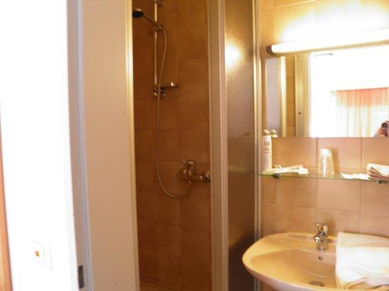 Gasthof-Hotel Zum Rebstock : Douche