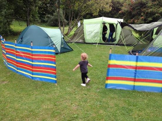 Westport House Camping & Caravan Park : campsite Westport House