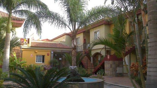 Residencial El Llano: Vegetacion