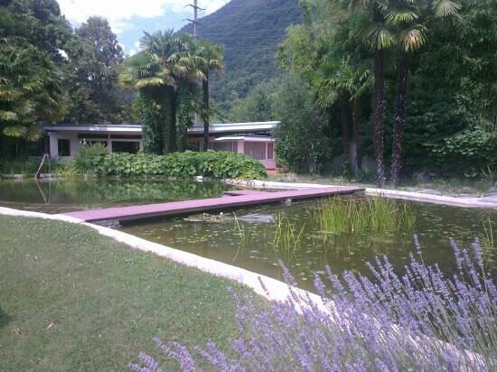 Albergo Losone: Garten aus Sicht von einer Terrasse..