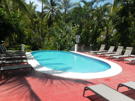 Falls Resort at Manuel Antonio : La piscina