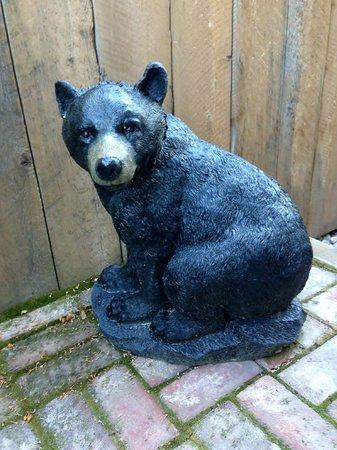 Bear's Den: The welcoming bear