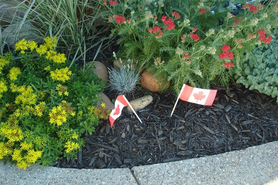 Bear's Den: Sweet garden decorated for Canada Day