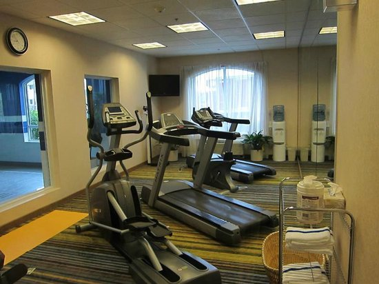Holiday Inn Express Hotel & Suites Belleville: Decent compact gym