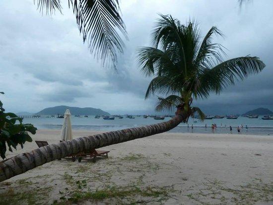 Con Dao Resort: Strand direkt vor dem Hotel