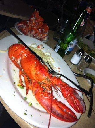Nexxt Cafe : lobster enorme e bem cozido