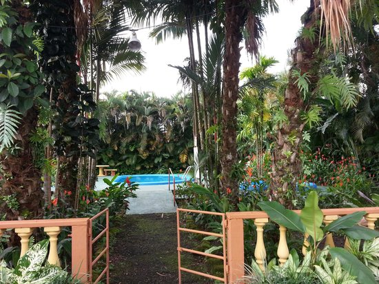 Hotel Arenal Rossi: with a pool and jacuzzi to relax after a long day