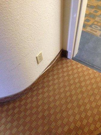 Sleep Inn & Suites Cullman: needs touch up work