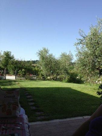 Poggio degli Olivi : giardino