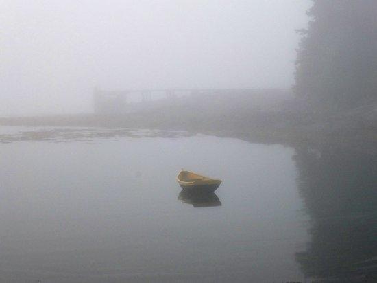 LimeRock Inn: Fogbound