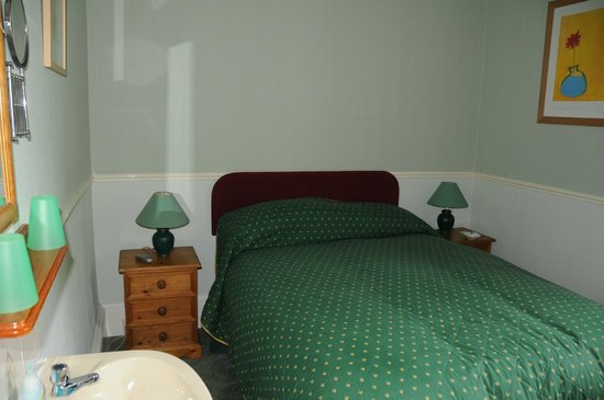 The Armadillo Guest House: room