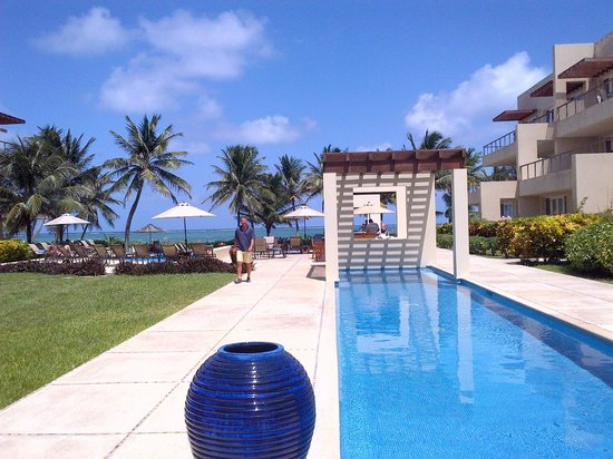 The Phoenix Resort: Lovely lap pool and grounds; reef can be seen in background