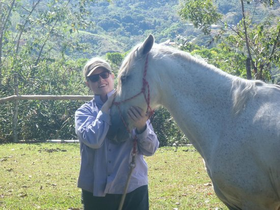 Barking Horse Farm: Me and Sox