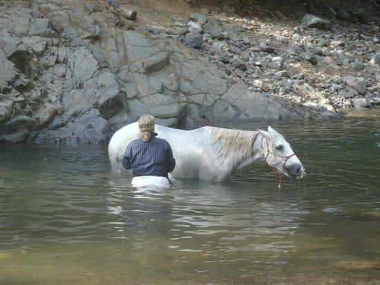 Barking Horse Farm: taking a relaxing break during the trek