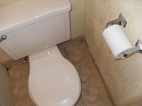 Super 8 Williamsburg Pottery : Trim around toilet
