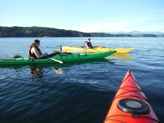 Quadra Island Kayaks - Day Tours: Heriott Bay on the sunset trip