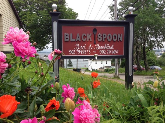 Black Spoon Bed & Breakfast
