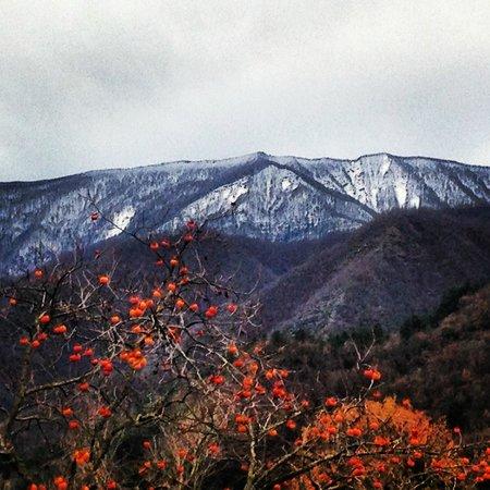 Santa Sofia, Italia: Biserno inverno 2012