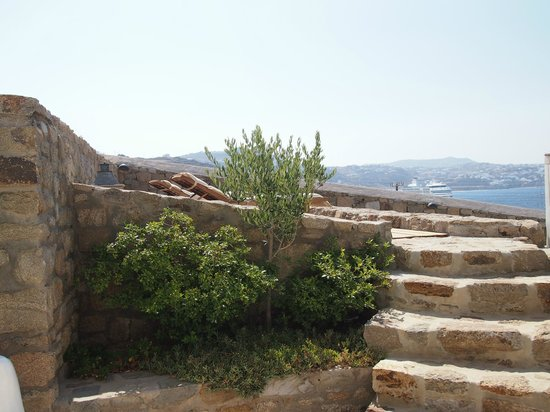 Rocabella Mykonos Art Hotel & SPA : petite terrasse supplémentaire et privative