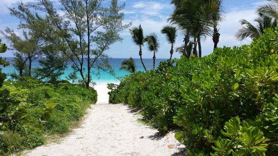 Heaven Pink Sand Beach Harbor Island