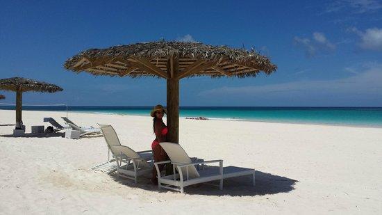 Pink Sand Beach Harbor Island Purely
