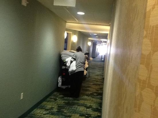 SpringHill Suites Salt Lake City Airport : customer service: staff starting day cleaning rooms on 4 thfloor